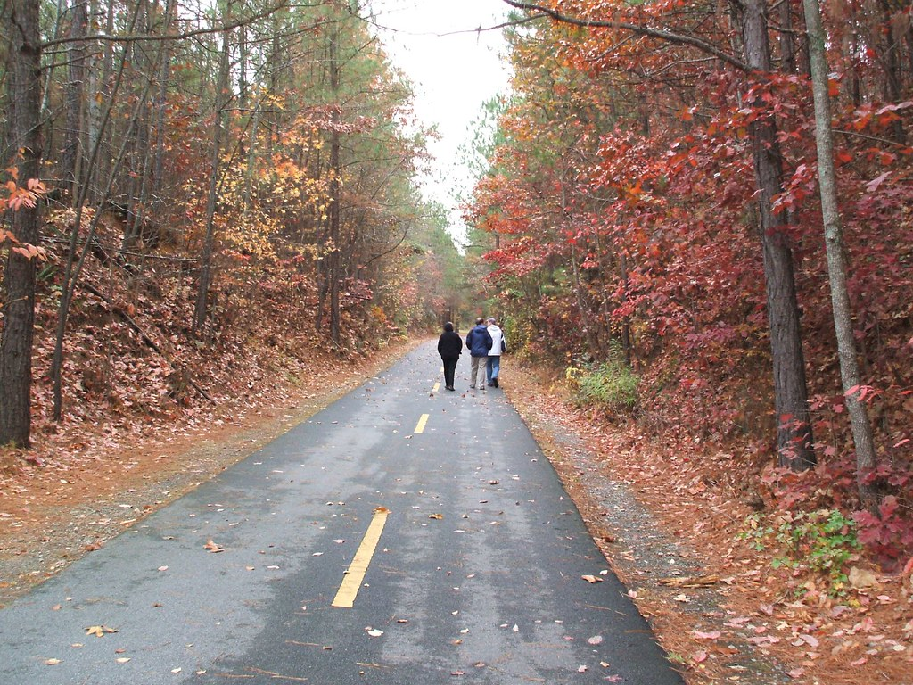 Three people walking through a road in autumn